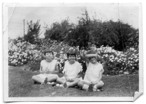 Primary view of object titled 'The Vise children sitting together in the grass'.