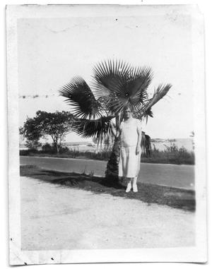 Primary view of object titled 'Neely Scrivner standing next to a palm tree'.