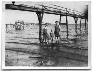 Primary view of object titled '[Photograph of Women and Children at the Beach]'.