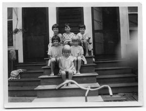 Primary view of object titled 'The Delaney and Vise children sitting on the steps of a house'.