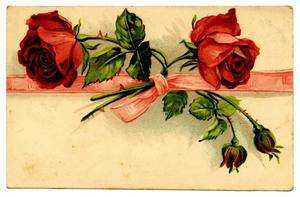 Primary view of object titled '[Roses and Ribbons]'.