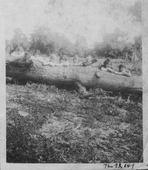 Primary view of object titled '[Eight teenagers or young adults behind a large fallen log.]'.