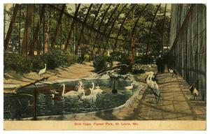 Primary view of object titled 'Bird Cage, Forest Park, St. Louis, Mo.'.