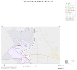 Primary view of object titled '1990 Census County Block Map (Recreated): Guadalupe County, Inset A01'.