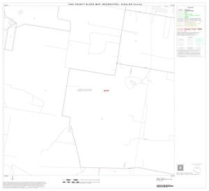 Primary view of object titled '1990 Census County Block Map (Recreated): Hidalgo County, Block 31'.