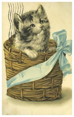Primary view of object titled '[Fluffy Cat in a Basket]'.