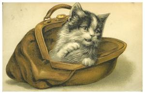 Primary view of object titled '[Fluffy Cat in a Handbag]'.