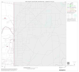 Primary view of object titled '1990 Census County Block Map (Recreated): Jim Wells County, Block 13'.