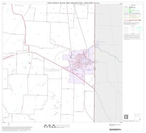 Primary view of object titled '1990 Census County Block Map (Recreated): Grayson County, Block 31'.