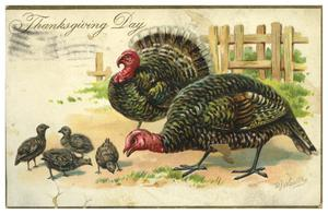Primary view of object titled '[Thanksgiving Day Postcard]'.