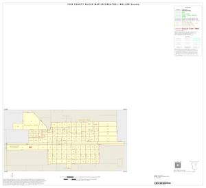 Primary view of object titled '1990 Census County Block Map (Recreated): Waller County, Inset E01'.