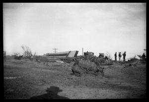 [Photograph of Higgins and Glazier, Texas Tornado Aftermath]