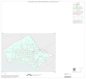 Primary view of object titled '1990 Census County Block Map (Recreated): Calhoun County, Inset E01'.