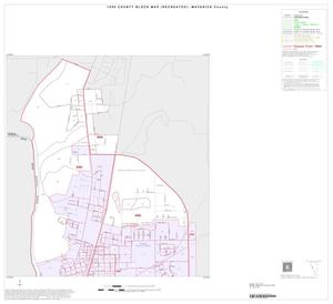 Primary view of object titled '1990 Census County Block Map (Recreated): Maverick County, Inset A01'.