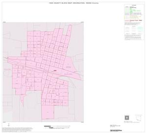 Primary view of object titled '1990 Census County Block Map (Recreated): Wood County, Inset E01'.