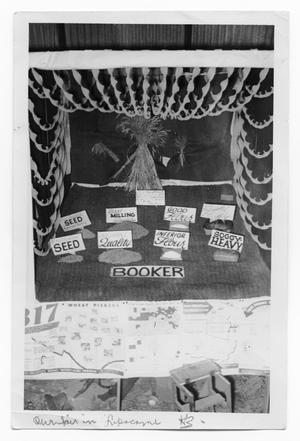 Primary view of object titled 'Wheat Display at Fair'.