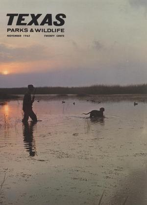 Texas Parks & Wildlife, Volume 23, Number 11, November, 1965