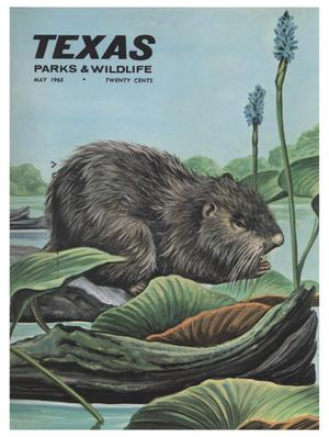 Texas Parks & Wildlife, Volume 23, Number 05, May, 1965