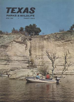 Primary view of object titled 'Texas Parks & Wildlife, Volume 23, Number 06, June, 1965'.