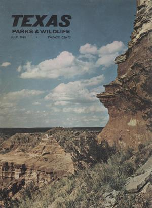 Primary view of object titled 'Texas Parks & Wildlife, Volume 23, Number 07, July, 1965'.