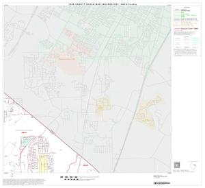 Primary view of object titled '1990 Census County Block Map (Recreated): Hays County, Block 10'.