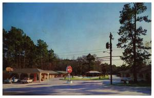 Primary view of object titled '[The Pines Motel]'.