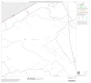 Primary view of object titled '1990 Census County Block Map (Recreated): McLennan County, Block 17'.