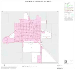 Primary view of object titled '1990 Census County Block Map (Recreated): Castro County, Inset A01'.