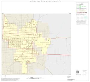 Primary view of object titled '1990 Census County Block Map (Recreated): Grayson County, Inset E01'.