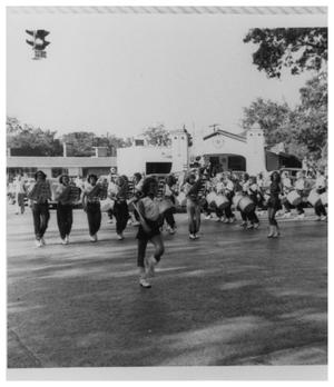 Primary view of object titled '[Bengal Guards in a Parade]'.