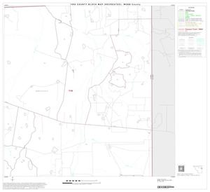 Primary view of object titled '1990 Census County Block Map (Recreated): Webb County, Block 13'.