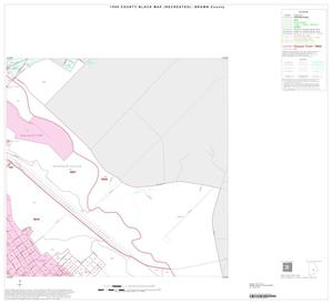 Primary view of object titled '1990 Census County Block Map (Recreated): Brown County, Inset D06'.