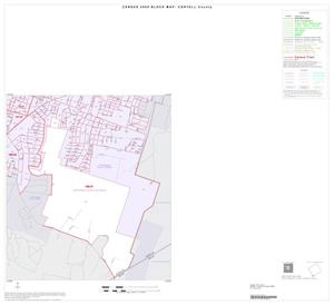 Primary view of object titled '2000 Census County Block Map: Coryell County, Inset D04'.