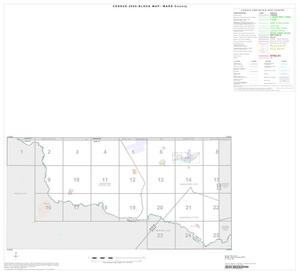Primary view of object titled '2000 Census County Block Map: Ward County, Index'.