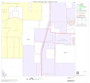 Primary view of object titled '2000 Census County Block Map: Tarrant County, Block 15'.