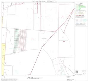 Primary view of object titled '2000 Census County Block Map: Cameron County, Block 51'.