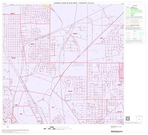 Primary view of object titled '2000 Census County Block Map: Tarrant County, Block 45'.