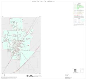 Primary view of object titled '2000 Census County Block Map: Medina County, Inset H02'.