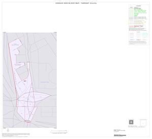 Primary view of object titled '2000 Census County Block Map: Tarrant County, Inset A01'.
