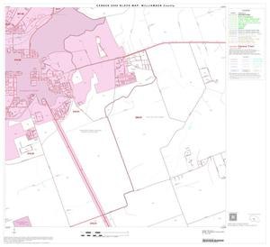 Primary view of object titled '2000 Census County Block Map: Williamson County, Block 41'.