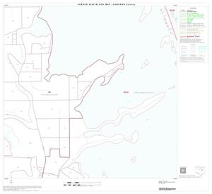 Primary view of object titled '2000 Census County Block Map: Cameron County, Block 22'.