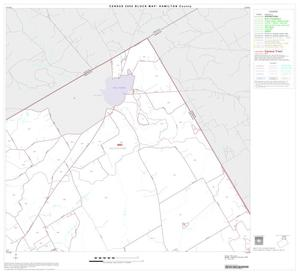 Primary view of object titled '2000 Census County Block Map: Hamilton County, Block 2'.