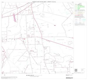 Primary view of object titled '2000 Census County Block Map: Liberty County, Block 6'.