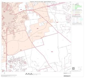 Primary view of object titled '2000 Census County Block Map: Montgomery County, Block 27'.