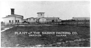 Primary view of object titled 'Sabine Packing Company plant'.