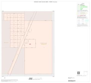 Primary view of object titled '2000 Census County Block Map: Terry County, Inset A01'.