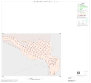 Primary view of object titled '2000 Census County Block Map: Terrell County, Inset A01'.