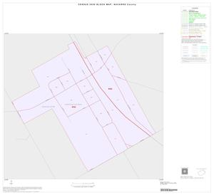 Primary view of object titled '2000 Census County Block Map: Navarro County, Inset B01'.