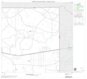 Primary view of object titled '2000 Census County Block Map: Liberty County, Block 17'.