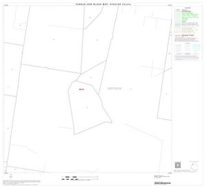 Primary view of object titled '2000 Census County Block Map: Hidalgo County, Block 21'.